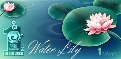 water-lily-vector-design
