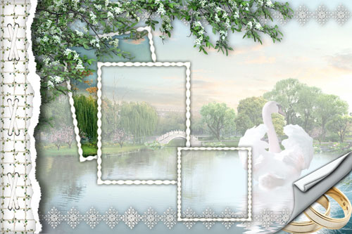 backgrounds for wedding pictures